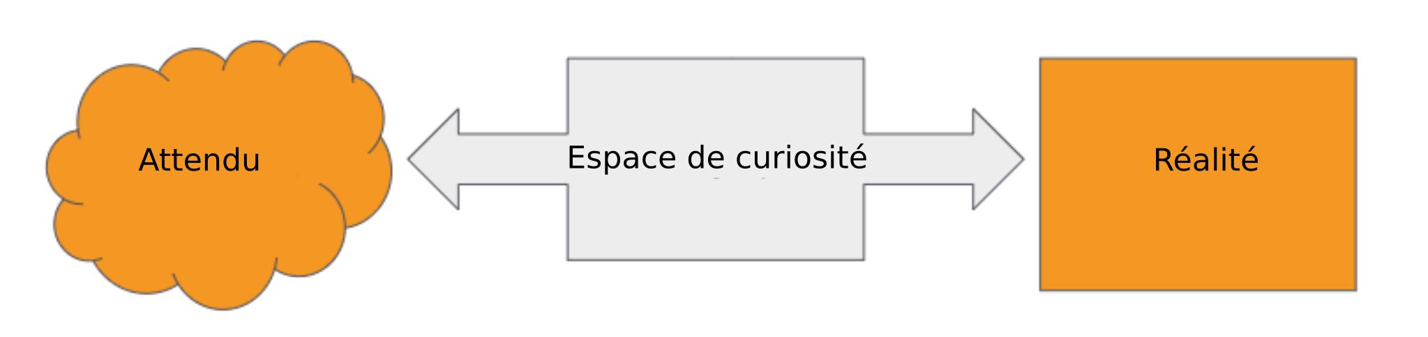 espace de curiosité